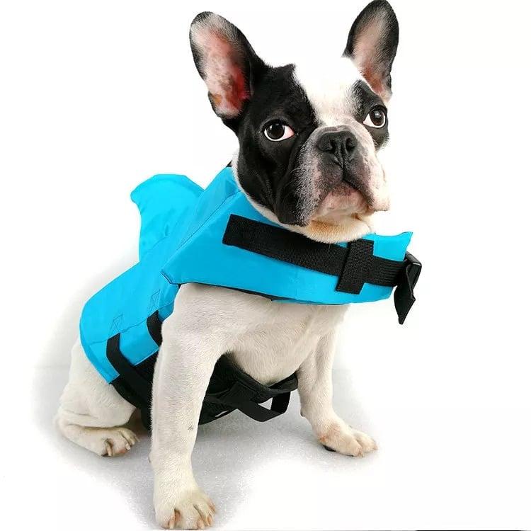 Dog shark life vest on Ecomhunt