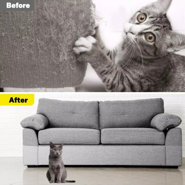 Ecomhunt's Trending Product Suggestion - Sell This Cat Couch Guard + Ad & Store Review And A Sale Strategy