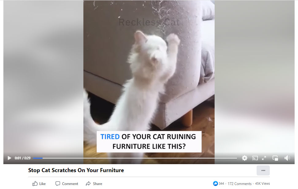 Cat couch guard Facebook video ad