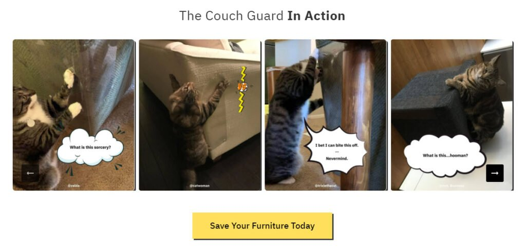 cat couch guard in action pictures